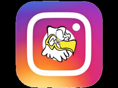 \\ Instagram Pygargues //